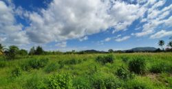 4 Rai of Land With Spectacular Views of Black Mountain
